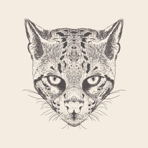 Illustrazione del gatto del disegno disegnato a mano. Vettore Premium