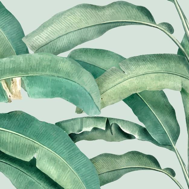 Illustrazione del modello estate tropicale Vettore gratuito
