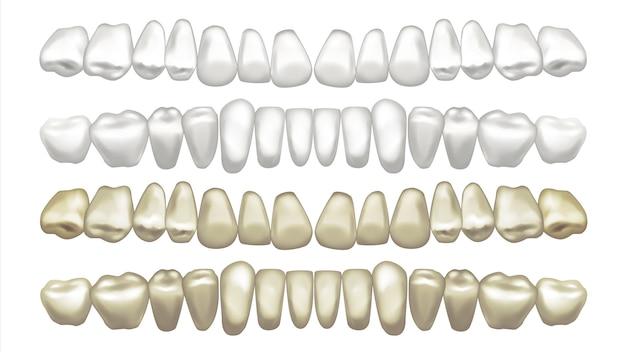 Illustrazione del set di denti Vettore Premium