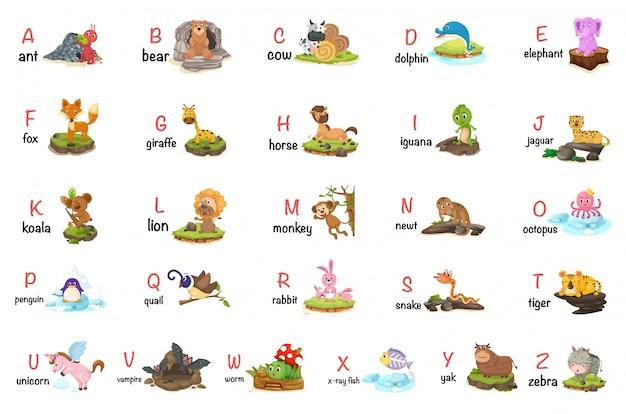 Illustrazione della lettera di alfabeto animale az Vettore Premium