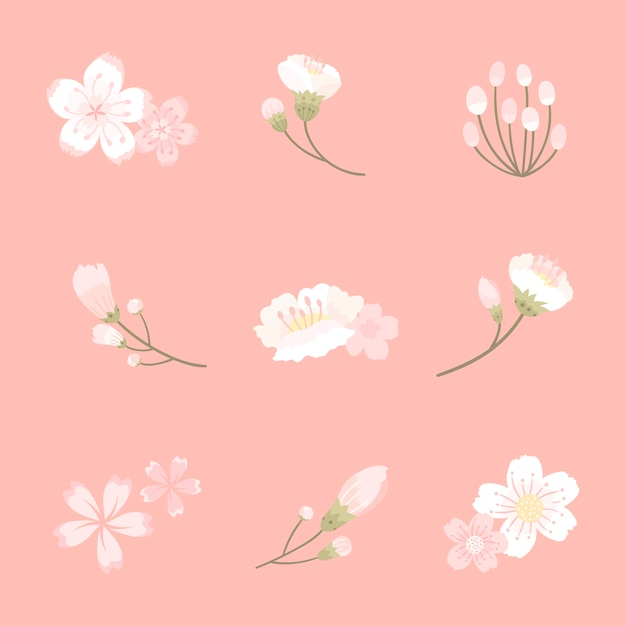 Illustrazione della priorità bassa del fiore di ciliegia Vettore gratuito