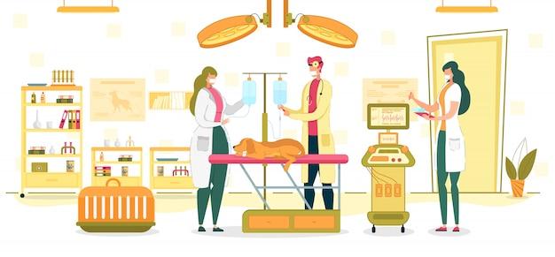 Illustrazione della sala operatoria di examining or surgery veterinaria Vettore Premium