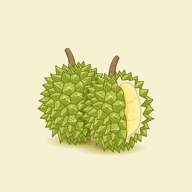 Illustrazione di cibo durian Vettore Premium