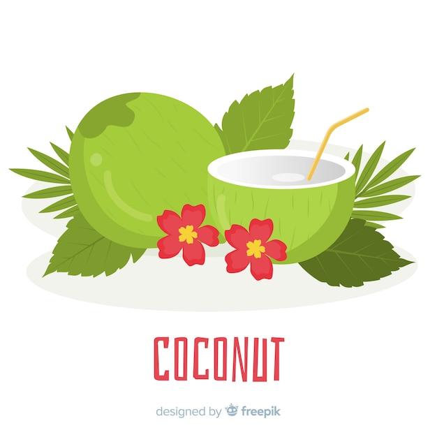 Illustrazione di cocco disegnati a mano Vettore gratuito