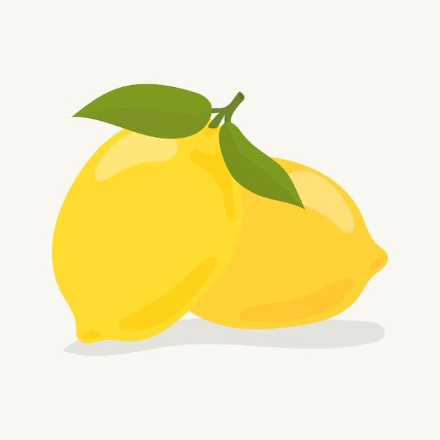 Illustrazione di limone colorato disegnato a mano Vettore gratuito