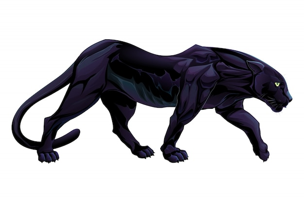 Illustrazione di un oggetto pantera nera di vettore isolato Vettore gratuito
