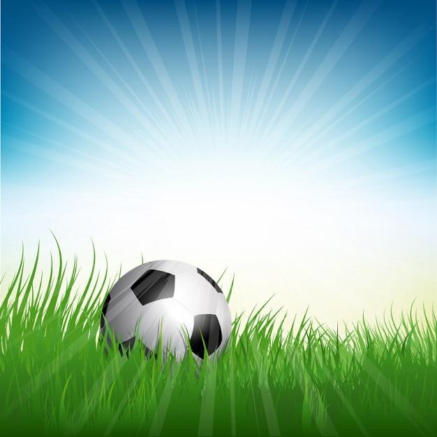 Illustrazione di un pallone da calcio calcio annidato in - Pagina da colorare di un pallone da calcio ...