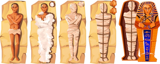 Illustrazione di vettore del fumetto della creazione della mummia Vettore gratuito