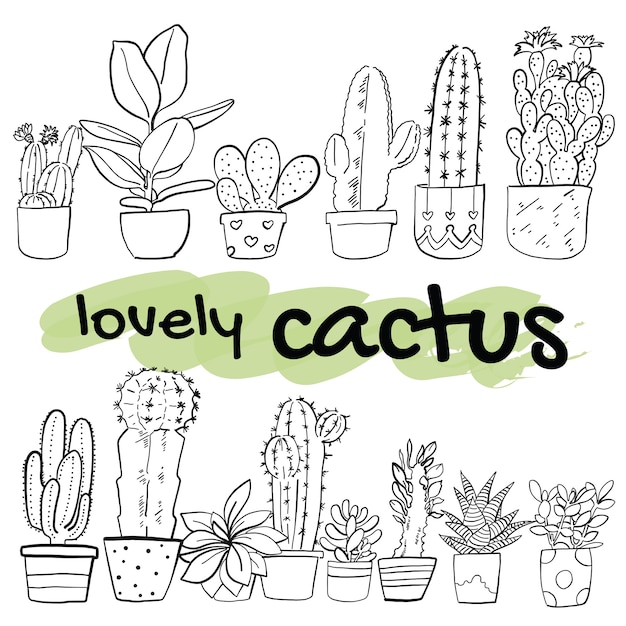 Illustrazione di vettore di cactus disegnato a mano Vettore Premium