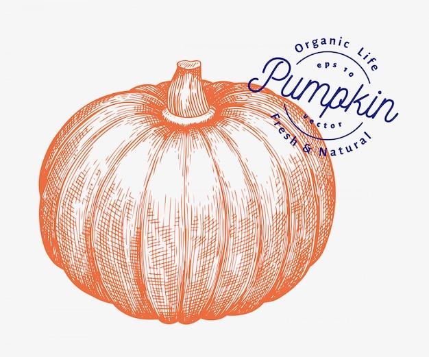 Illustrazione di zucca illustrazione disegnata a mano della verdura di vettore. halloween o il giorno del ringraziamento in stile inciso Vettore Premium