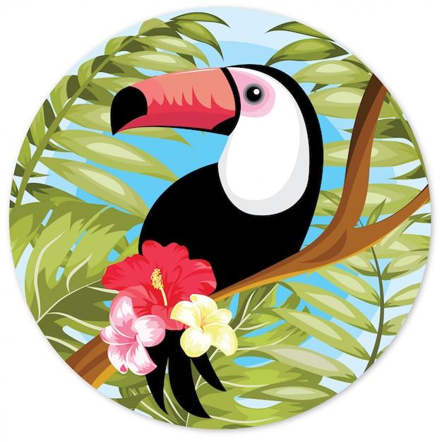 Illustrazione disegnata a mano del tucano con il fiore rosso Vettore Premium