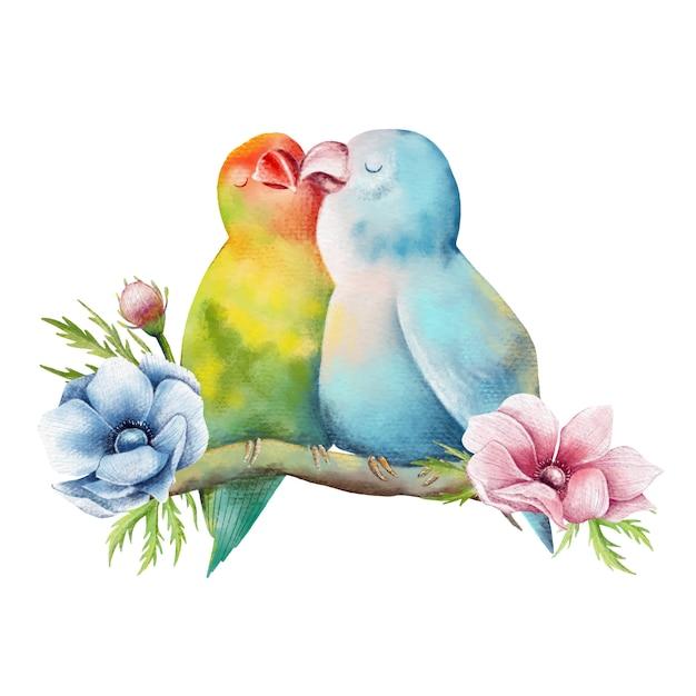 Illustrazione disegnata a mano di bella coppia di pappagalli Vettore Premium