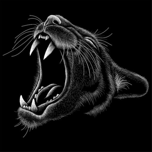 Illustrazione disegnata a mano nello stile di gesso del leone di montagna Vettore Premium