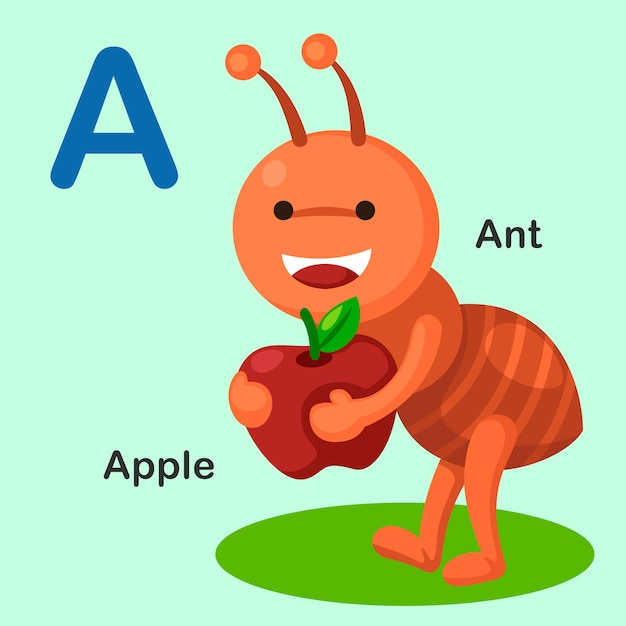 Illustrazione isolato alfabeto animale lettera a-ant, apple Vettore Premium