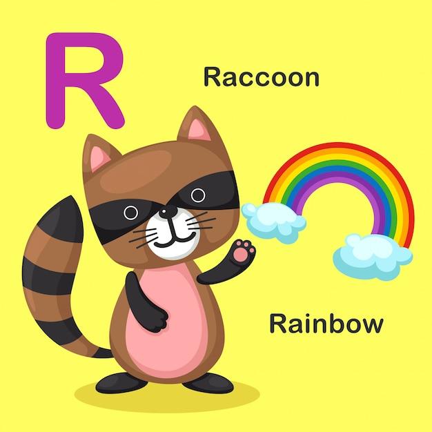 Illustrazione isolato alfabeto animale lettera r-rainbow, raccoon Vettore Premium