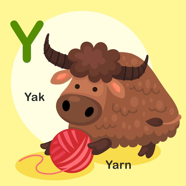 Illustrazione isolato alfabeto animale lettera y-yak, filato Vettore Premium