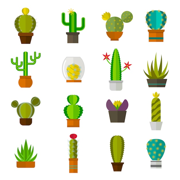 Illustrazione piana di vettore della natura della raccolta sveglia del cactus del fumetto. Vettore Premium