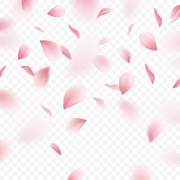 Illustrazione realistica di caduta dei petali rosa di sakura Vettore gratuito