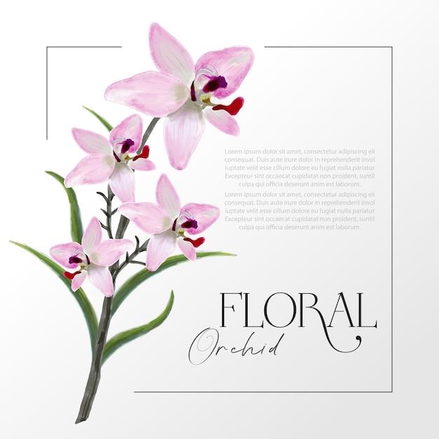 Illustrazione realistica di colore di acqua di vettore dei fiori rosa dell'orchidea Vettore Premium