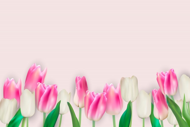 Illustrazione realistica di vettore sfondo di tulipani colorati. eps10 Vettore Premium