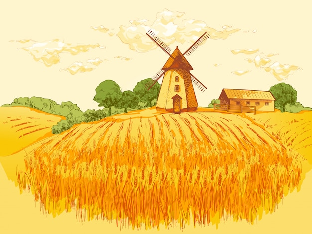Illustrazione rurale del grano del campo del paesaggio Vettore Premium