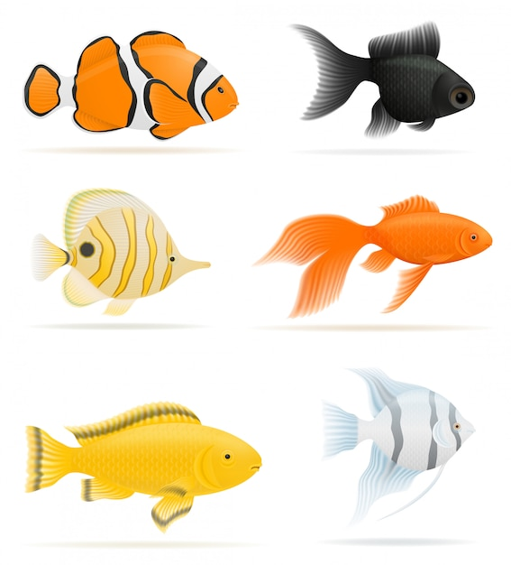 Illustrazione vettoriale di pesci d'acquario Vettore Premium