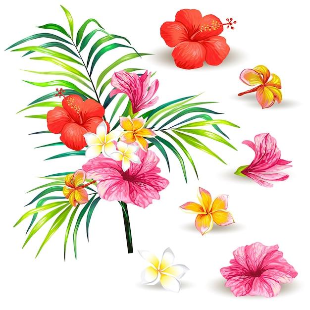 Illustrazione vettoriale di un ramo realistico stile di una palma tropicale con fiori di ibisco Vettore gratuito