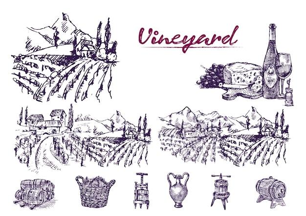 Illustrazione viola disegnata a mano dettagliata della vigna di arte di linea Vettore Premium
