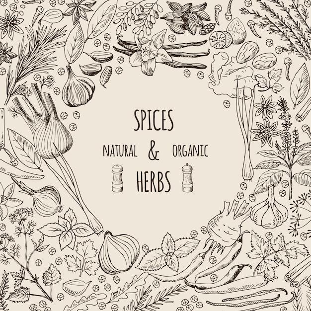 Illustrazioni di sfondo sane con spezie ed erbe aromatiche. Vettore Premium
