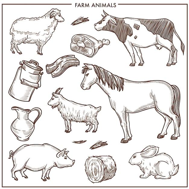 Illustrazioni piane del fumetto isolate animali svegli della fattoria messi Vettore Premium