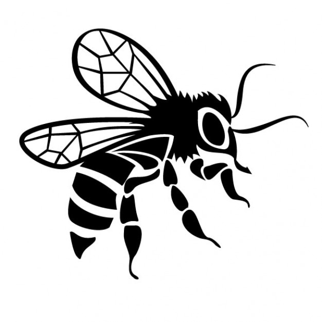 Immagine vettoriale di disegno ape nera scaricare