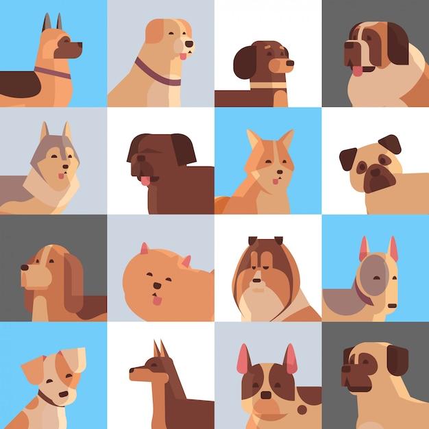 Impostare diversi cani di razza pelosi amici umani a casa animali domestici concetto di raccolta animali del fumetto impostare ritratto Vettore Premium
