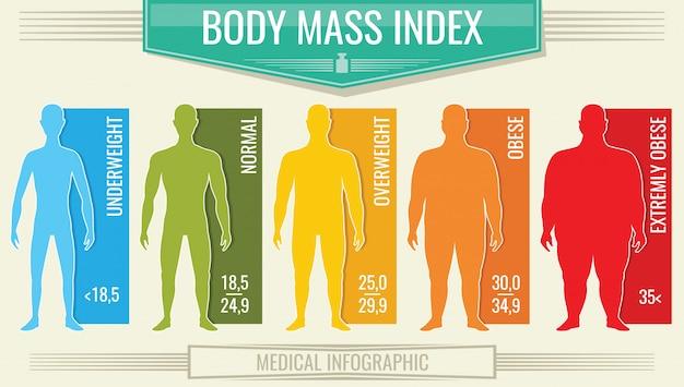 Indice di massa corporea uomo, grafico bmi fitness con sagome maschili e scala Vettore Premium