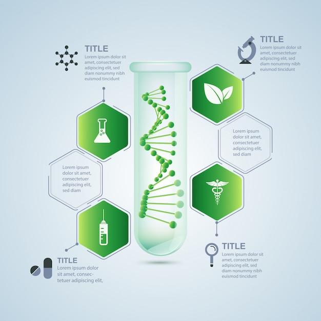 Infografica di ricerca biologica Vettore Premium