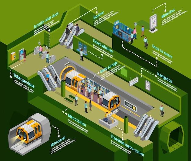 Infografica sotterranea impostata Vettore gratuito
