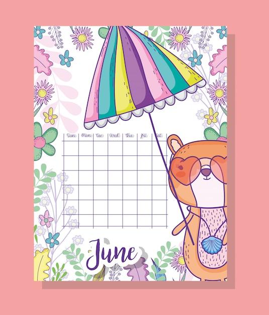 Informazioni sul calendario di giugno con scoiattolo e piante Vettore Premium