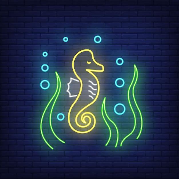 Insegna al neon di cavalluccio marino. cavalluccio marino, alghe e bolle elementi di banner o cartelloni luminosi. Vettore gratuito