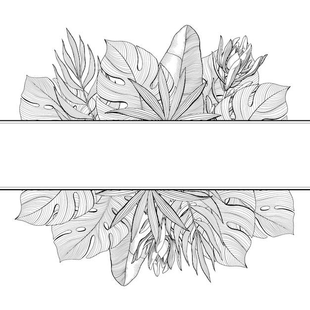 Insegna con i bordi superiori e più bassi delle foglie di palma tropicali e della giungla, illustrazione disegnata a mano di vettore Vettore Premium