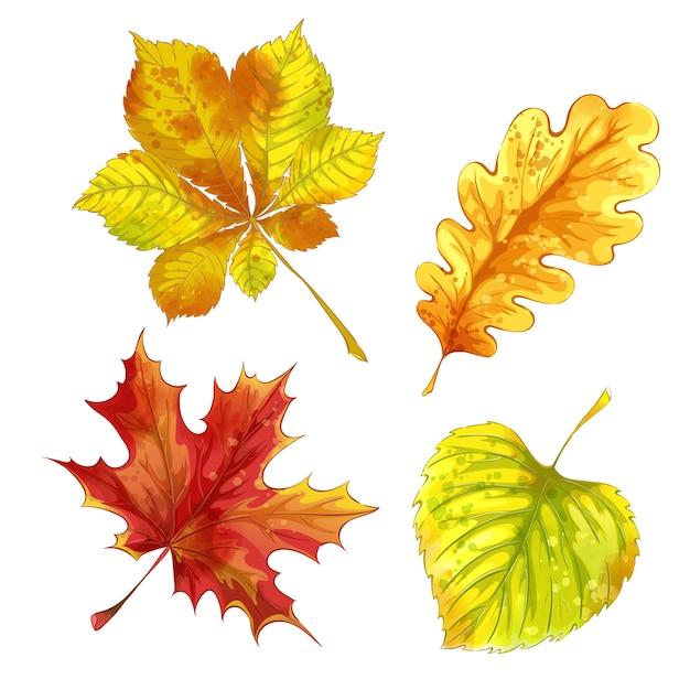 Insieme delle foglie cadute autunno con struttura dell'acquerello. Vettore Premium