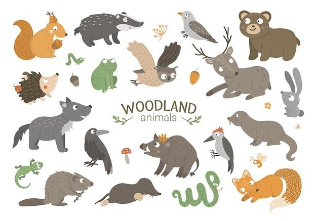 Insieme di animali del bosco piatto disegnato a mano di vettore. divertente collezione animalistica Vettore Premium