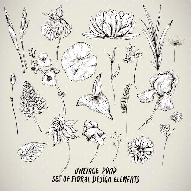 Insieme di elementi di fiori d'acqua stagno dell'annata Vettore Premium