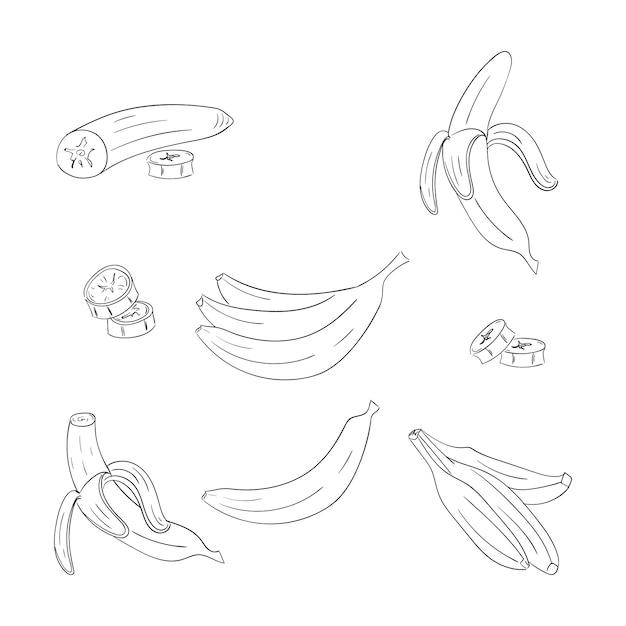 Insieme di illustrazioni di contorno singolo e mazzo di banane Vettore Premium