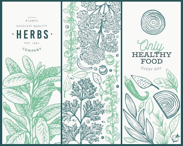 Insieme di modelli di banner di erbe aromatiche albero. Vettore Premium