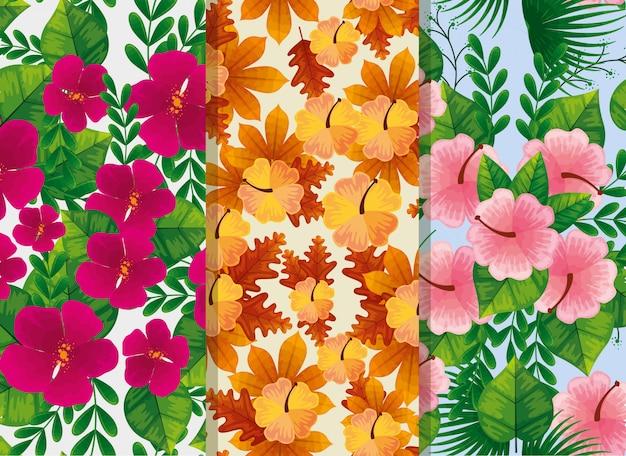 Insieme di modelli di fiori e foglie Vettore gratuito