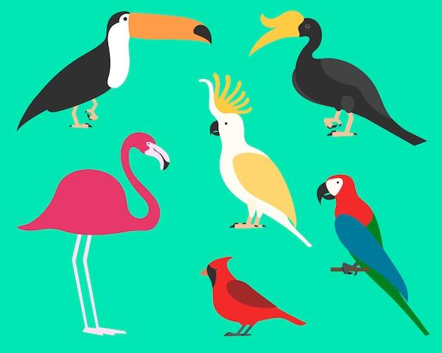 Insieme di uccelli, sullo sfondo. diverso stile tropicale e domestico, stile cartoon semplice per loghi. Vettore Premium