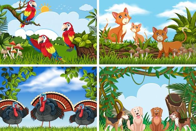 Insieme di vari animali in scene di natura Vettore Premium