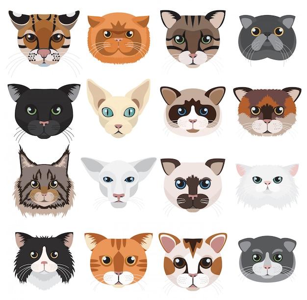 Insieme di vettore degli emoticon delle icone delle teste dei gatti. Vettore Premium