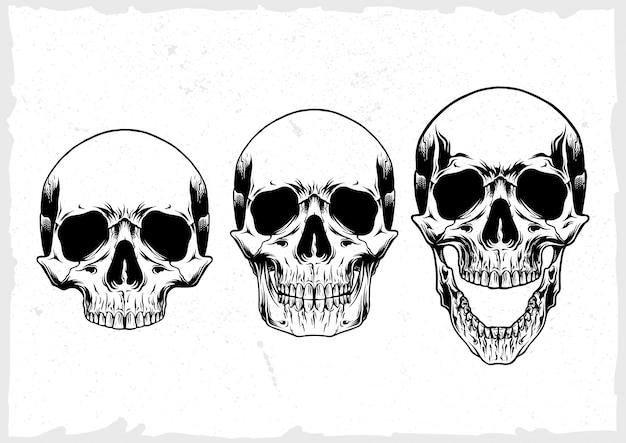 Insieme di vettore del cranio Vettore Premium