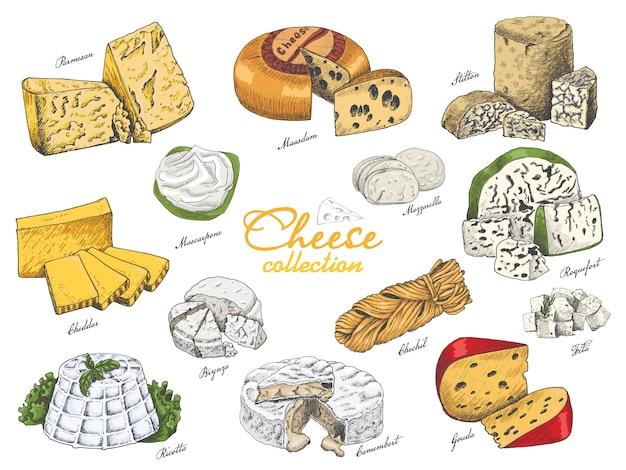 Insieme di vettore di formaggi di colore diverso Vettore Premium