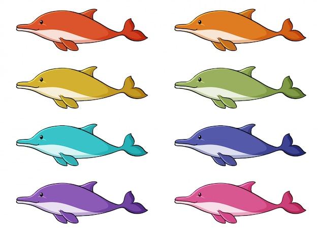 Insieme isolato del delfino in molti colori Vettore gratuito